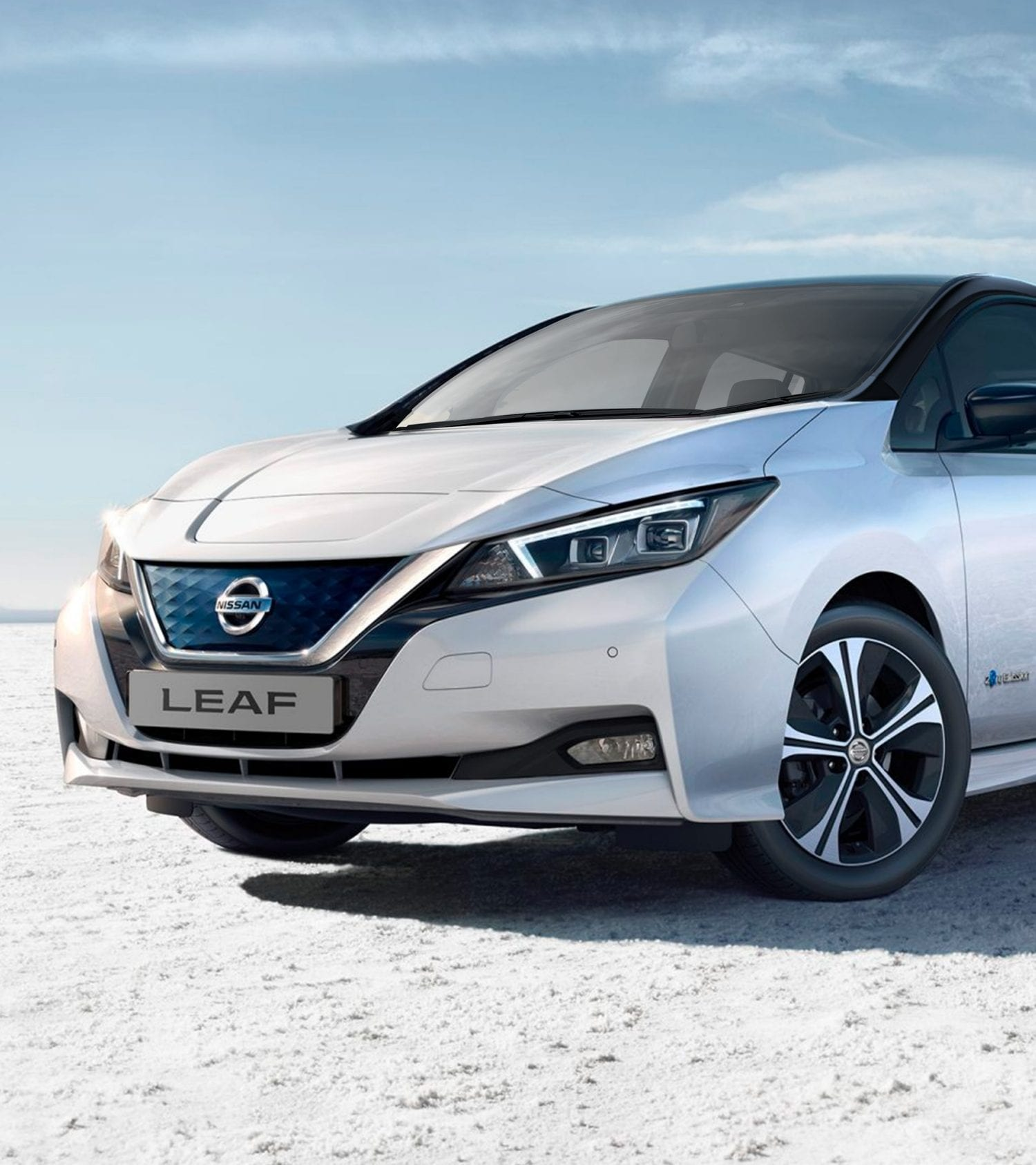 Nissan Leaf Actie